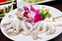 Bạch tuộc Nhật Bản tại Hà Nội